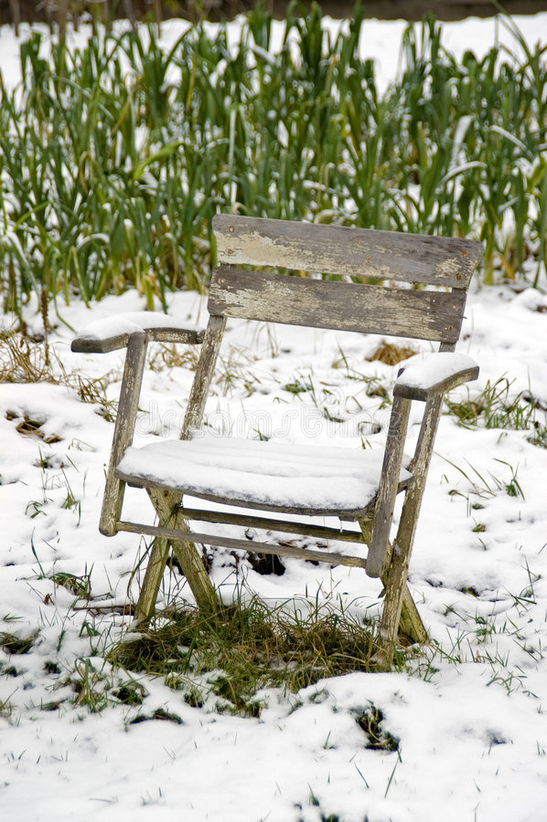 Download χιονώδες λαχανικό κήπων εδρών Στοκ Εικόνα - εικόνα από allotrope, αριστερός: 397529