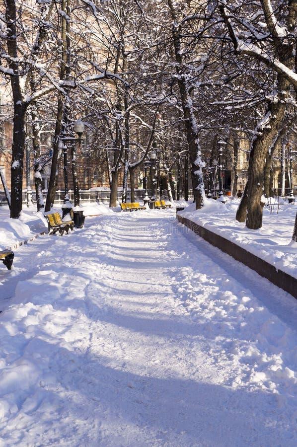 Χιονώδες πάρκο στο πρωί υπόβαθρο, εποχιακό στοκ εικόνες