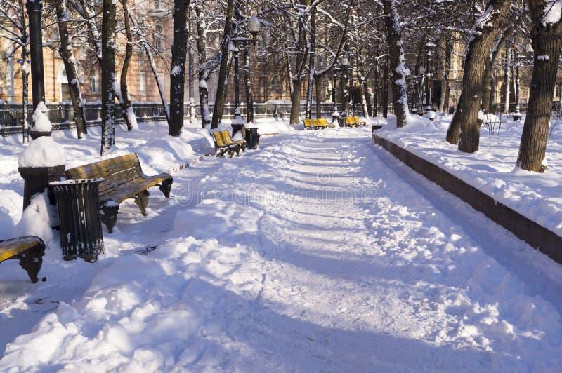 Χιονώδες πάρκο στο πρωί υπόβαθρο, εποχιακό στοκ εικόνα με δικαίωμα ελεύθερης χρήσης