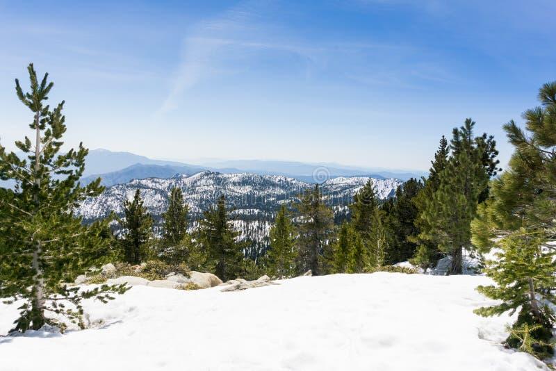 Χιονώδες τοπίο στο ίχνος για να τοποθετήσει την αιχμή SAN Jacinto, Καλιφόρνια στοκ φωτογραφία