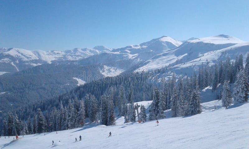 Χιονώδες τοπίο mauntain φύσης της Αυστρίας στοκ φωτογραφίες