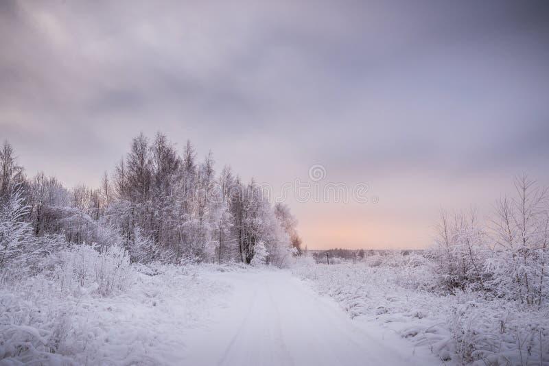 Χιονώδες χειμερινό τοπίο στο ηλιοβασίλεμα στοκ φωτογραφία με δικαίωμα ελεύθερης χρήσης