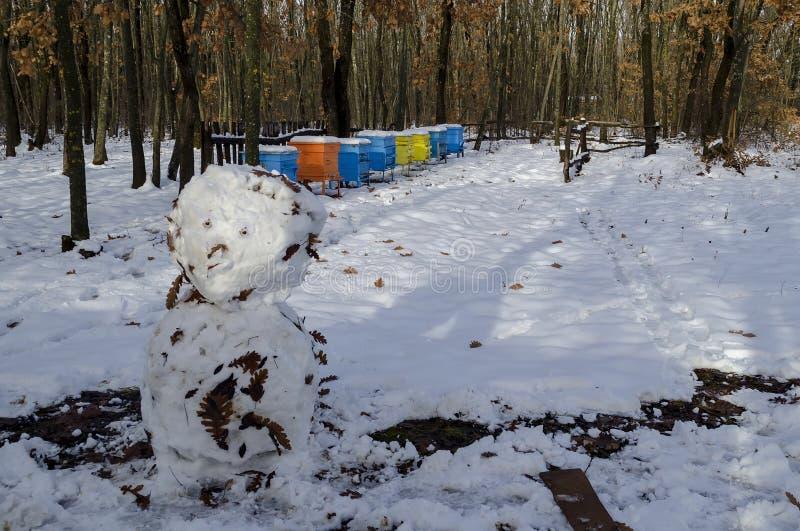 Χιονώδης άποψη προς το μελισσουργείο με την κυψέλη μελισσών και το χιονάνθρωπο στο χειμερινό τομέα στο αποβαλλόμενο δάσος, πόλη Z στοκ φωτογραφίες με δικαίωμα ελεύθερης χρήσης