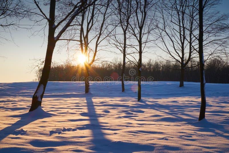 Χιονώδης χειμερινή υπαίθρια σκηνή στοκ φωτογραφία με δικαίωμα ελεύθερης χρήσης