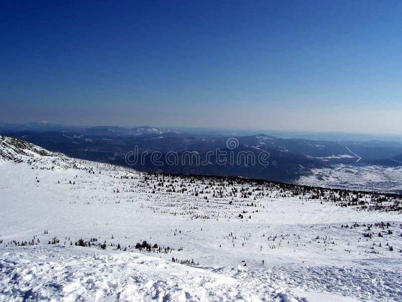 Χιονώδη έρημος και βουνά, Σιβηρία στοκ φωτογραφία