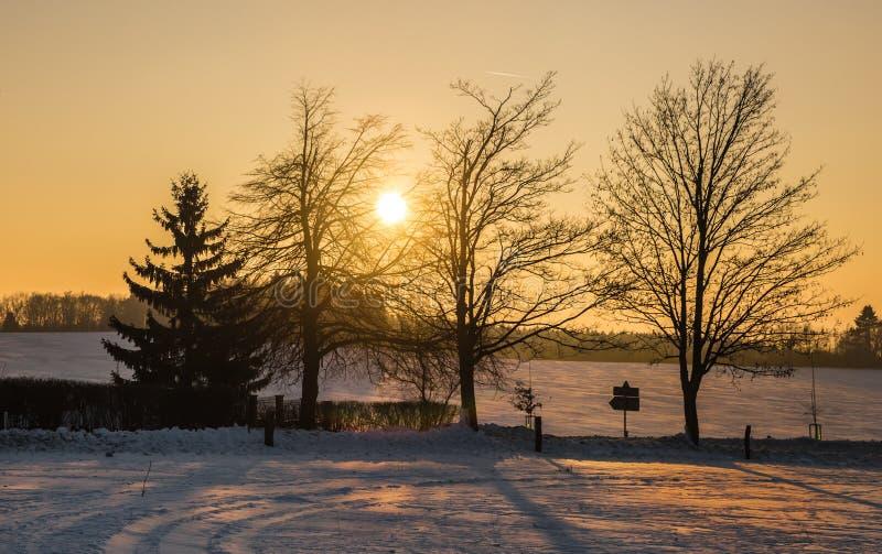 Χιονώδες τοπίο και ηλιοβασίλεμα μέσω των δέντρων στοκ φωτογραφίες με δικαίωμα ελεύθερης χρήσης