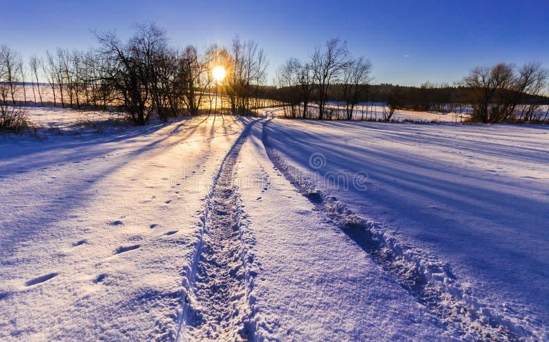 Χιονώδες τοπίο και ηλιοβασίλεμα μέσω των δέντρων στοκ φωτογραφίες