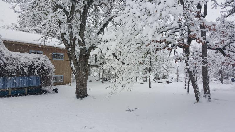 Χιονώδης ημέρα σε Mosier Όρεγκον στοκ εικόνα