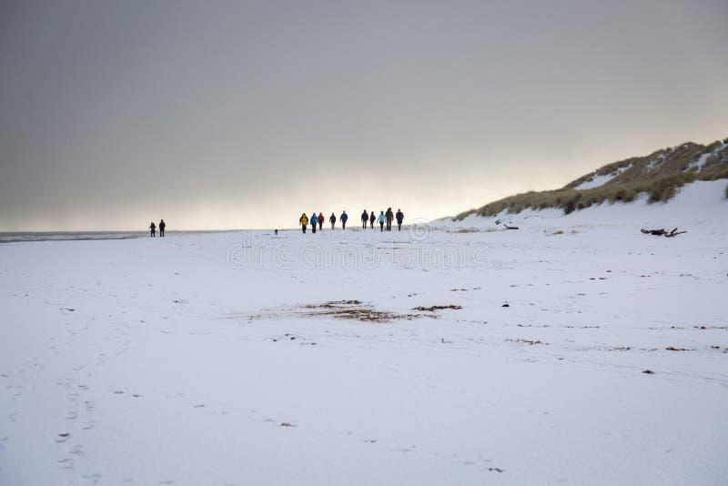 Χιονώδης παραλία με την ομάδα περιπατητών στοκ εικόνα με δικαίωμα ελεύθερης χρήσης