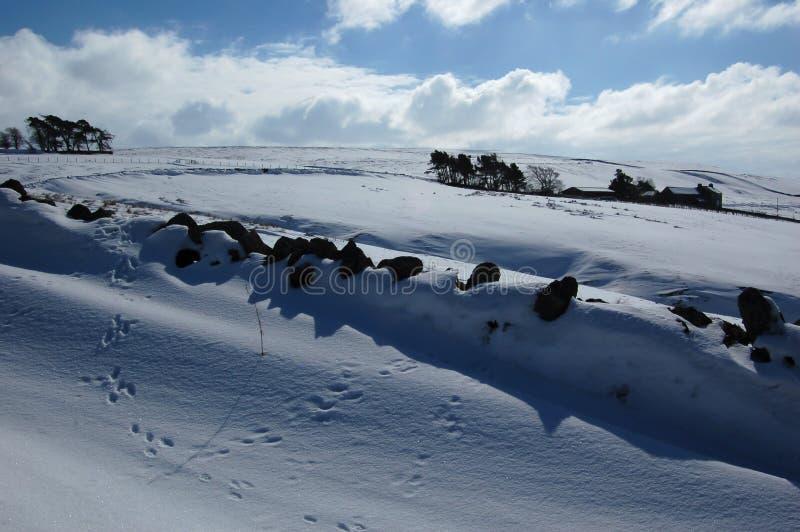 Χιονώδης σκηνή κοντά σε Allendale, Northumberland, Αγγλία στοκ φωτογραφίες
