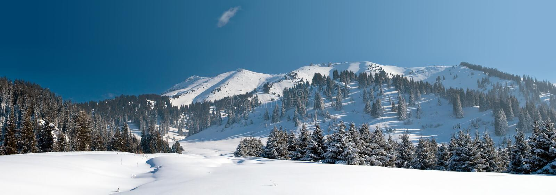 Χιονώδης χειμώνας στο βουνό στοκ εικόνα με δικαίωμα ελεύθερης χρήσης