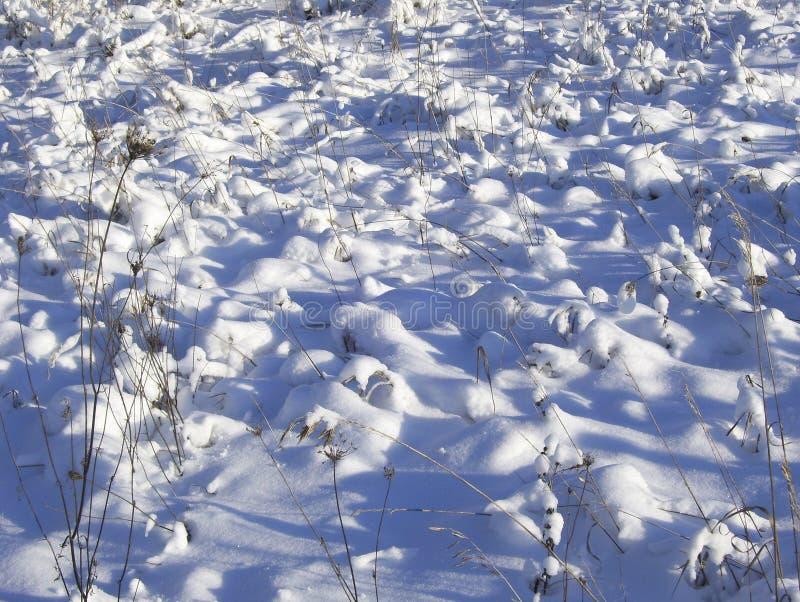 Χιονώδη hummocks πέρα από τη χλόη στον τομέα στοκ εικόνα