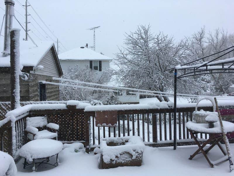 Χιόνι άνοιξη στοκ εικόνες