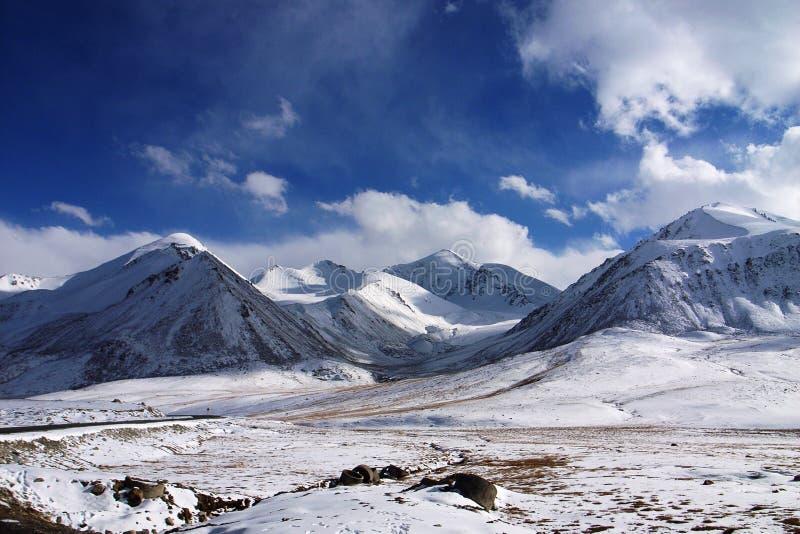 χιόνι βουνών στοκ εικόνα