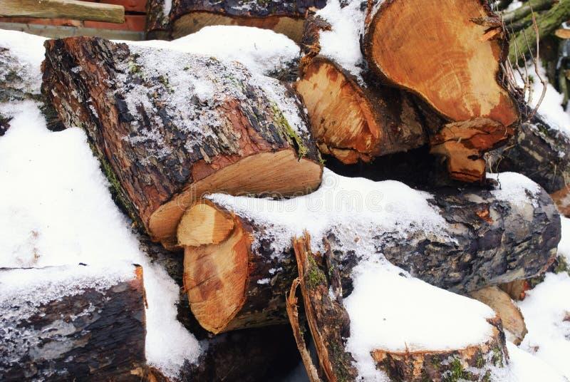 χιόνι κάτω από το δάσος στοκ φωτογραφία με δικαίωμα ελεύθερης χρήσης