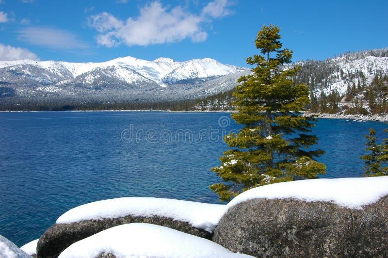χιόνι λιμνών tahoe στοκ φωτογραφία