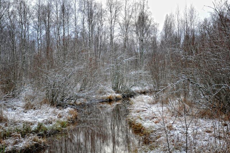 Χιόνι Νοεμβρίου στοκ φωτογραφία