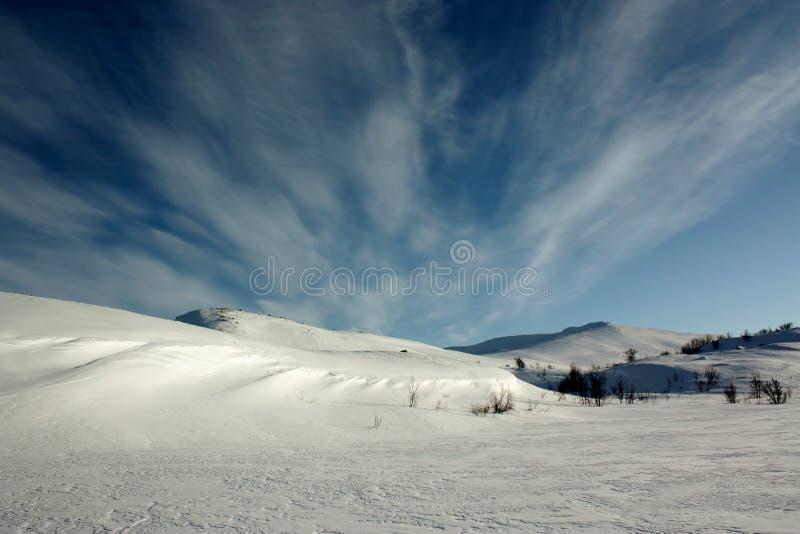 Χιόνι, πάγος και ζαλίζοντας μπλε ουρανός στο χειμερινό τοπίο της Νορβηγίας στοκ εικόνες με δικαίωμα ελεύθερης χρήσης