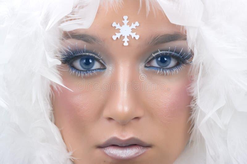 χιόνι πριγκηπισσών στοκ εικόνες
