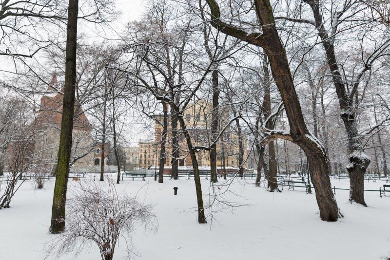 Χιόνι στο πάρκο Κρακοβία Πολωνία στοκ εικόνα με δικαίωμα ελεύθερης χρήσης