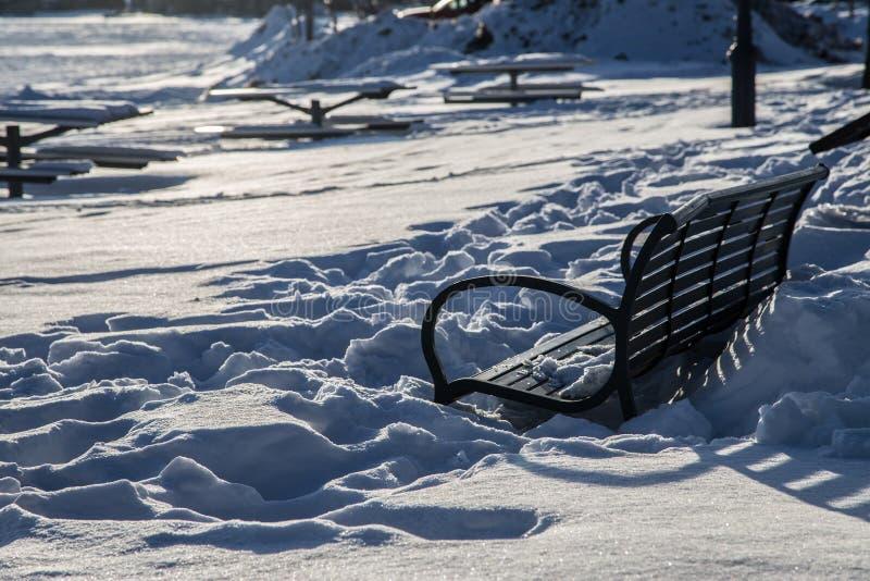 Χιόνι στο πάρκο στοκ εικόνες