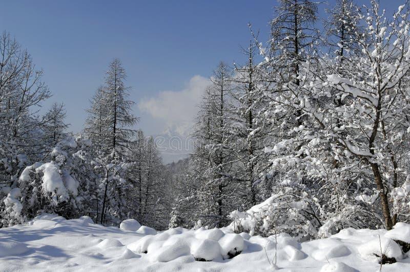 χιόνι τοπίων στοκ φωτογραφία με δικαίωμα ελεύθερης χρήσης