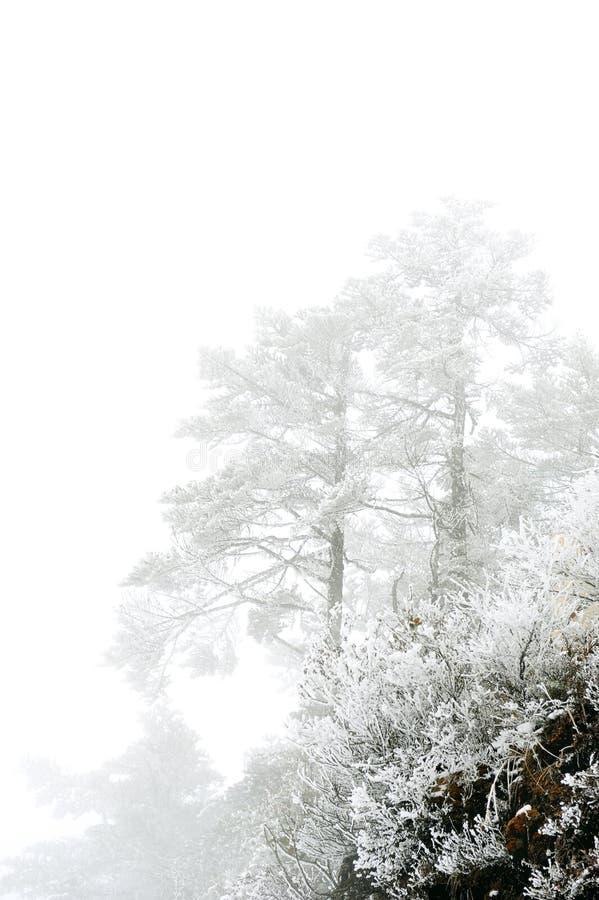 Download χιόνι ΧΙ βουνών μολβών της Κί& Στοκ Εικόνα - εικόνα από καλυμμένος, δρόμος: 22778213