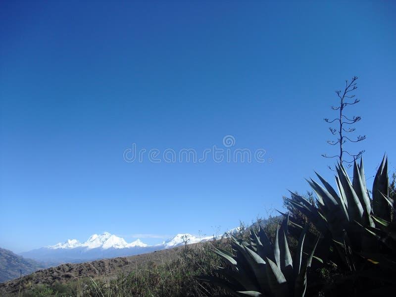 Χιόνι Huascaran Περού στοκ εικόνα