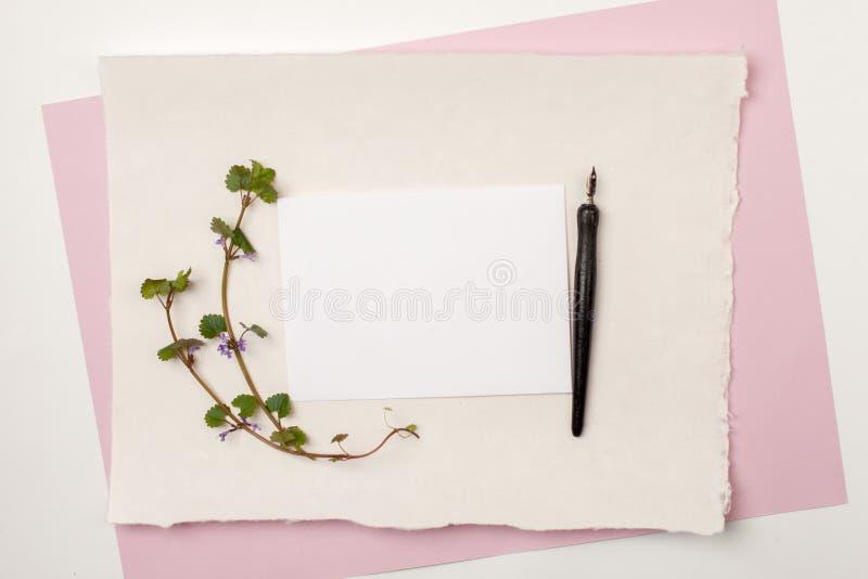 Χλεύη επάνω των κενών καρτών εγγράφου για τη γαμήλια πρόσκληση ή την καλλιγραφία Το επίπεδο γαμήλιων προτύπων βάζει, τοπ άποψη με στοκ εικόνα με δικαίωμα ελεύθερης χρήσης