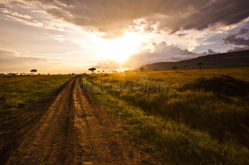 χλοώδης διαδρομή στοκ φωτογραφία με δικαίωμα ελεύθερης χρήσης