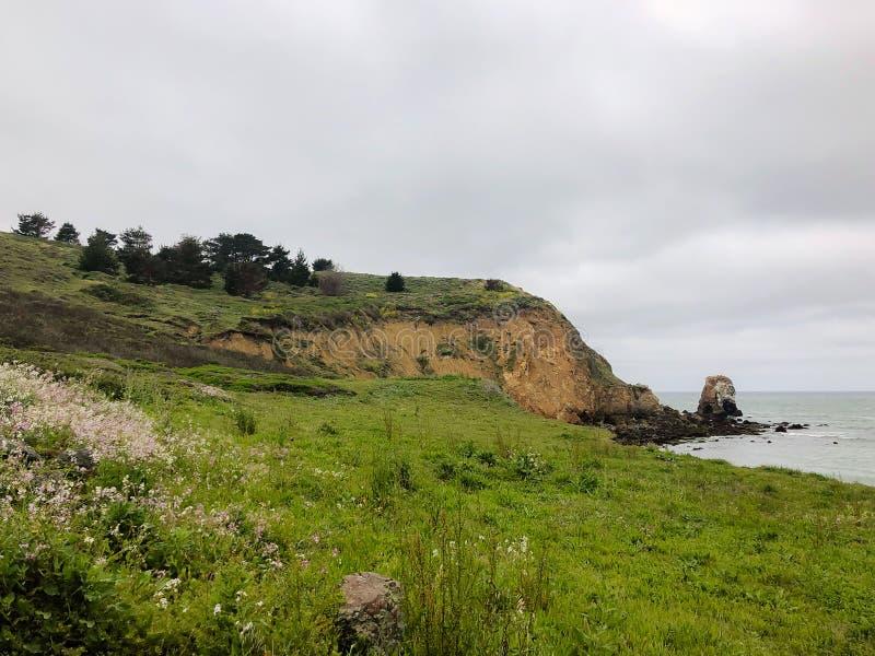 Χλοώδης παράκτια πεζοπορία που σύρεται γεμισμένος με Wildflowers, τις εγκαταστάσεις, και τα δέντρα που αγνοούν την παραλία Rockaw στοκ εικόνα