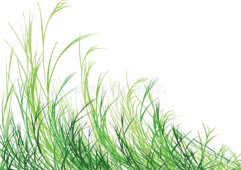 χλόη πιό πράσινη ελεύθερη απεικόνιση δικαιώματος