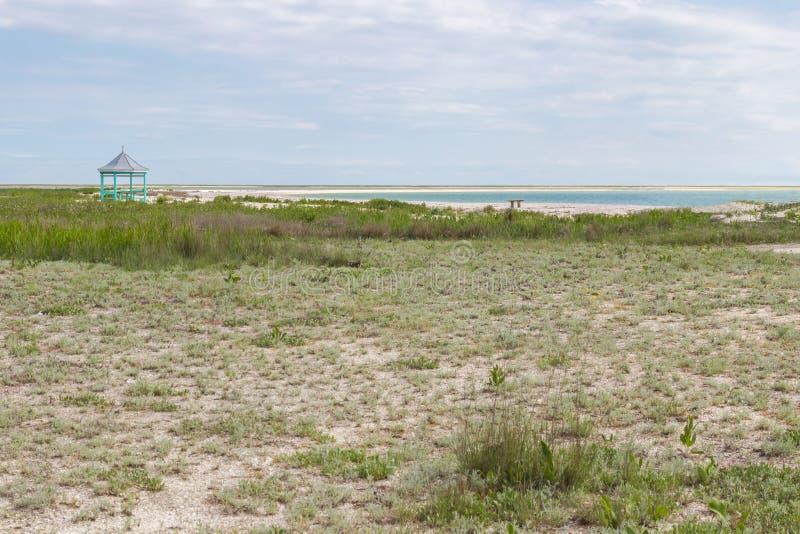 Χλόη στεπών θαλασσίως, ξύλινος πάγκος στοκ φωτογραφία με δικαίωμα ελεύθερης χρήσης