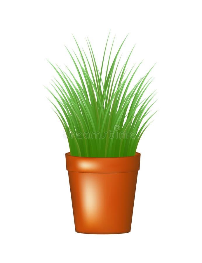 Χλόη flowerpot διανυσματική απεικόνιση