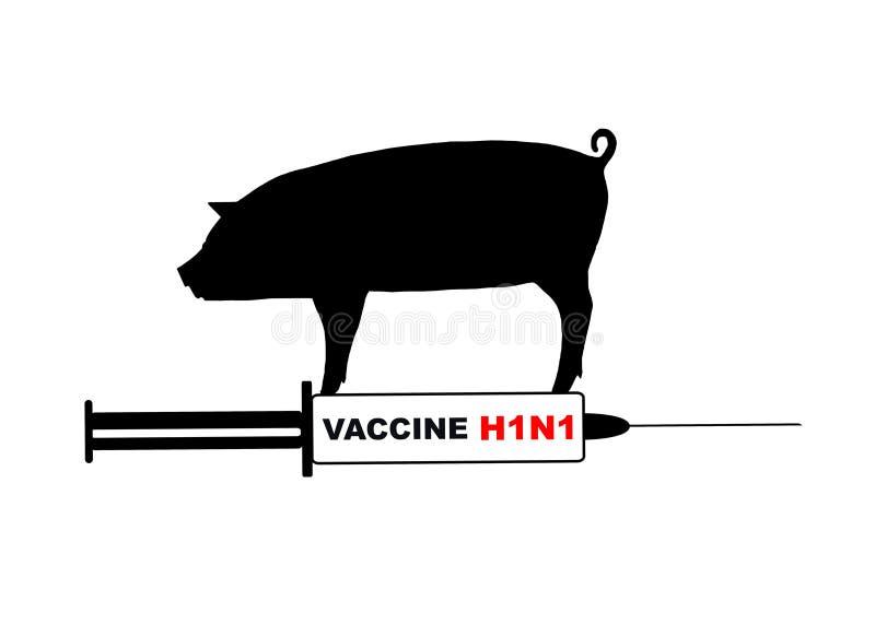 χοίροι γρίπης ελεύθερη απεικόνιση δικαιώματος