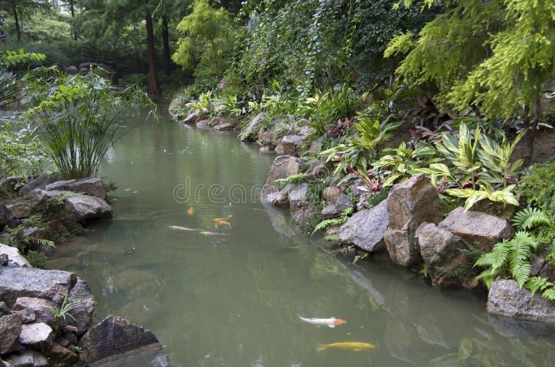 Χονγκ Κονγκ κήπων της Zen στοκ εικόνες με δικαίωμα ελεύθερης χρήσης