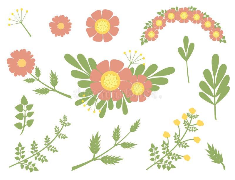 Χορτάρια και άγρια λουλούδια set_4 απεικόνιση αποθεμάτων