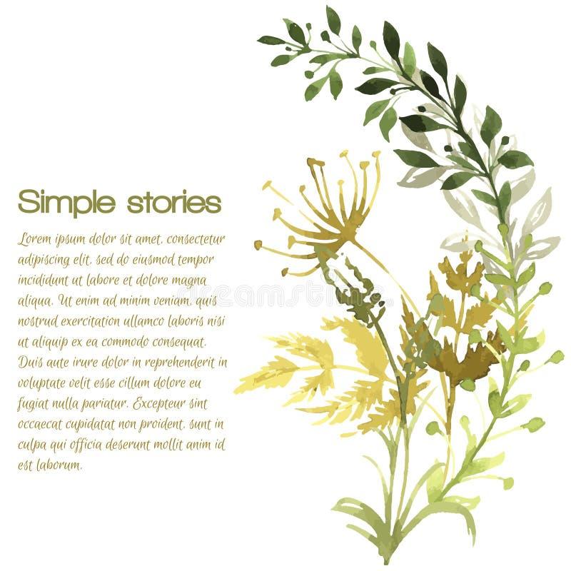 Χορτάρια Watercolor και λουλούδια, διανυσματικό υπόβαθρο ελεύθερη απεικόνιση δικαιώματος