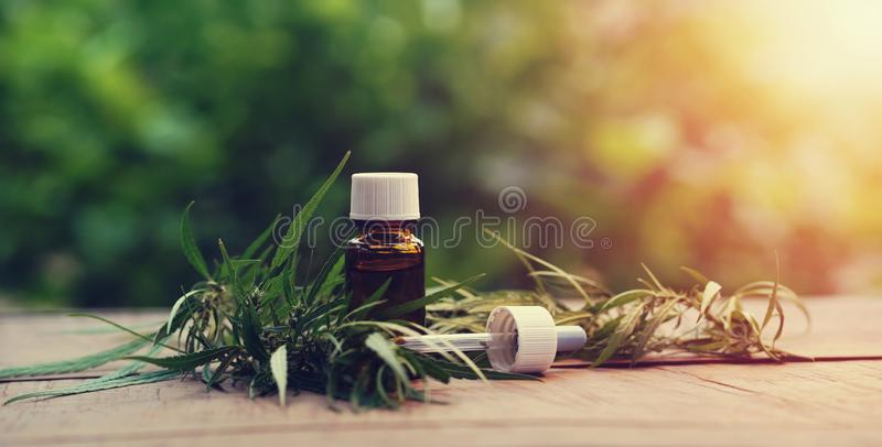 Χορτάρι και φύλλα καννάβεων με τα αποσπάσματα πετρελαίου στα βάζα r στοκ φωτογραφία με δικαίωμα ελεύθερης χρήσης