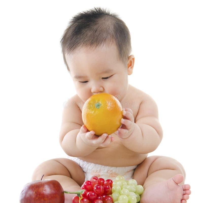 χορτοφάγος μωρών στοκ εικόνες