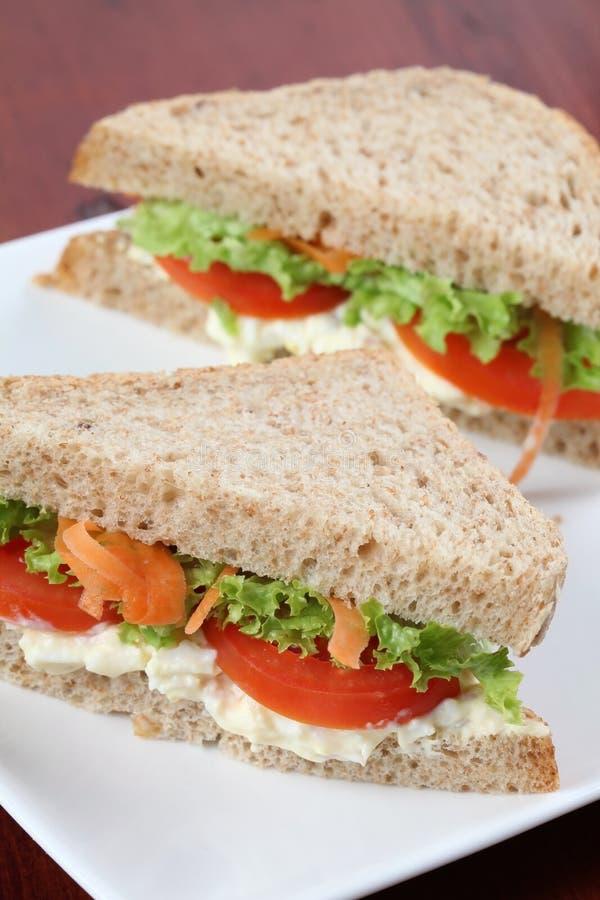 χορτοφάγος σάντουιτς στοκ φωτογραφία