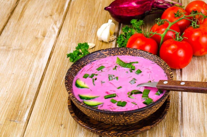 Χορτοφάγος σούπα τεύτλων με τα πράσινα κρεμμύδια στοκ εικόνες με δικαίωμα ελεύθερης χρήσης