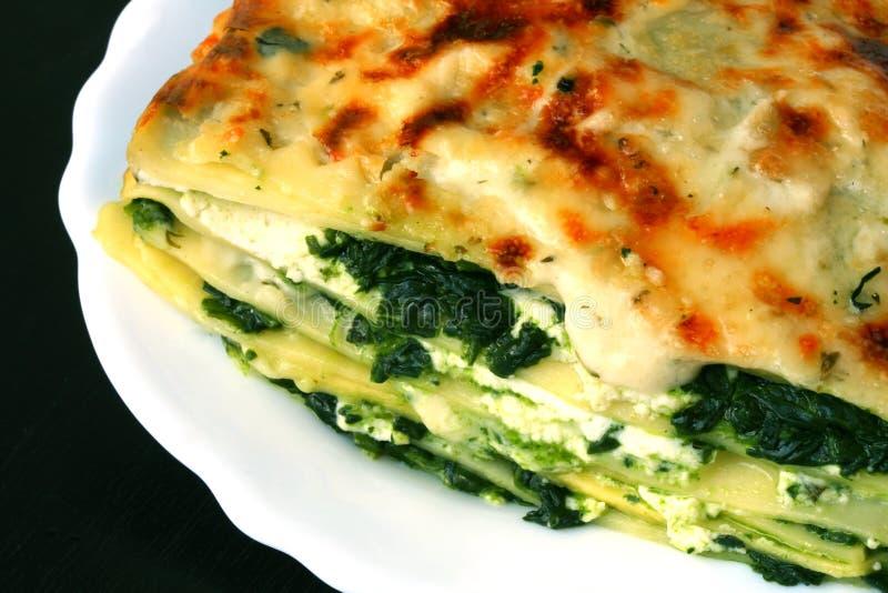 χορτοφάγος lasagna στοκ εικόνες