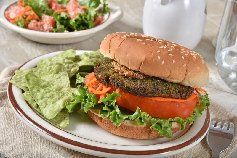Χορτοφάγο Burger του Kale στοκ εικόνες