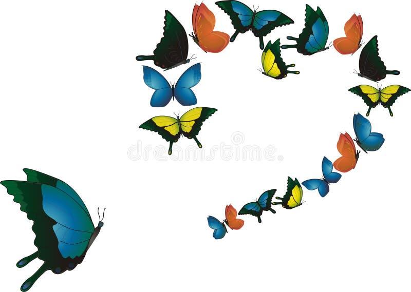 χορός πεταλούδων στοκ φωτογραφίες