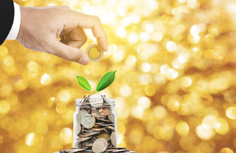 Χρήματα αποταμίευσης και χρυσή έννοια επένδυσης, χέρι που βάζουν το νόμισμα στο βάζο γυαλιού με την ανάπτυξη εγκαταστάσεων, χρυσό στοκ εικόνα με δικαίωμα ελεύθερης χρήσης