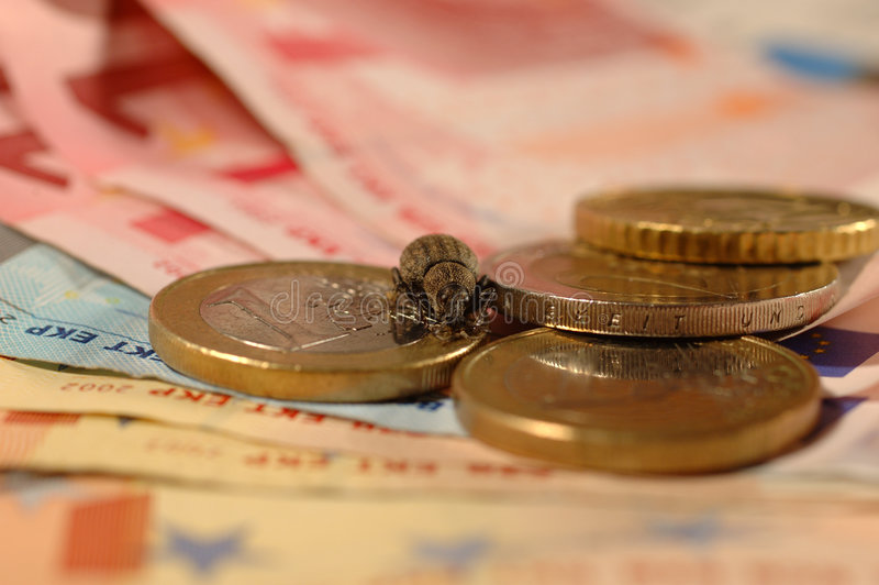 χρήματα προγραμματιστικ&omicro Στοκ Εικόνες