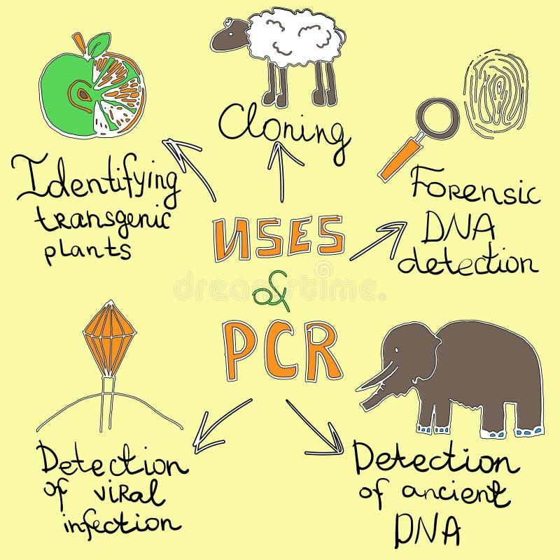 Χρήσεις pcr handdrawn ελεύθερη απεικόνιση δικαιώματος