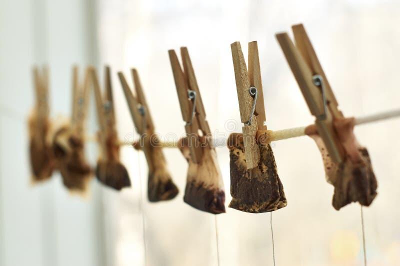Χρησιμοποιημένες τσάντες τσαγιού που κρεμούν στη σκοινί για άπλωμα στοκ φωτογραφία