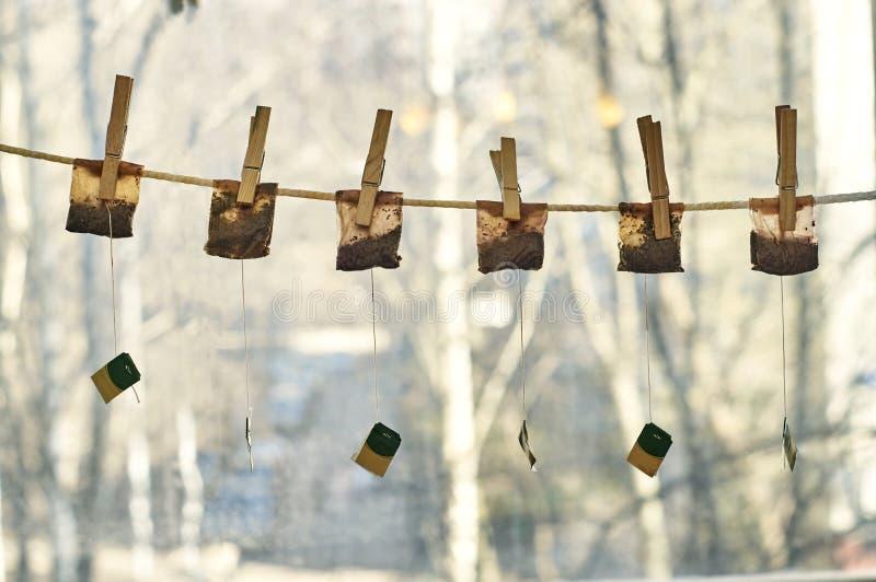 Χρησιμοποιημένες τσάντες τσαγιού που κρεμούν στη σκοινί για άπλωμα στοκ εικόνα